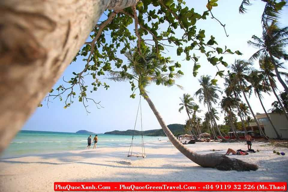 watch the spectacular natural scenery ,immerse yourself in cool waters, gives you the interesting experience , relax, enjoy great food in Phu Quoc,