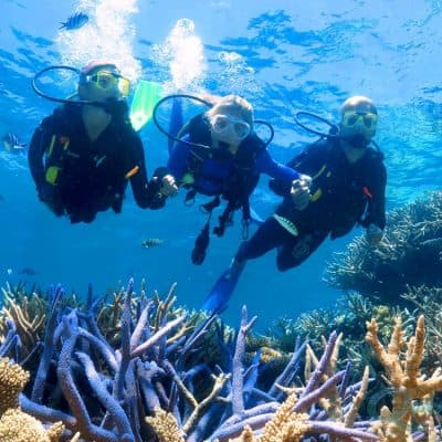 Phu Quoc Scuba Diving and snorkelling Tour