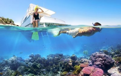 phu-quoc-snorkeling-watching-coral