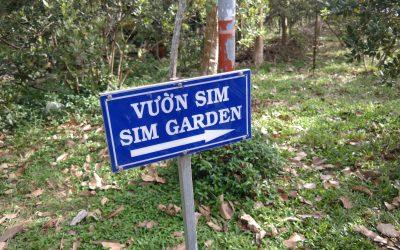 Phu Quoc Sim wine garden
