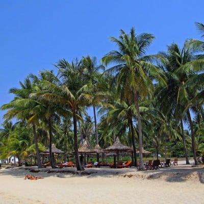 Tour Sài Gòn Phú Quốc 3 Ngày 2 Đêm Máy Bay