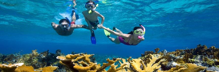 snorkeling-roatan-1