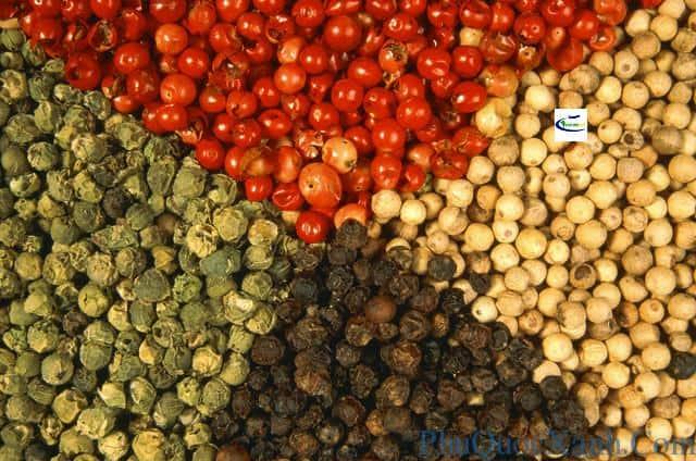 Various sorts of pepper grains --- Image by © TH-Foto/zefa/Corbis
