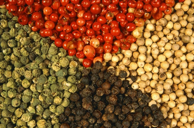 Various sorts of pepper grains --- Image by © TH-Foto/zefa/Corbis