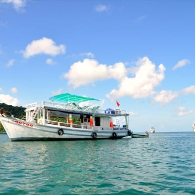 Cho thuê tàu tại Phú Quốc câu cá lặn ngắm san hô khám phá đảo hoang