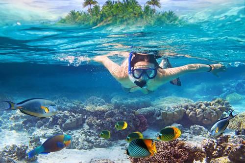 Snorkeling tai phú quốc