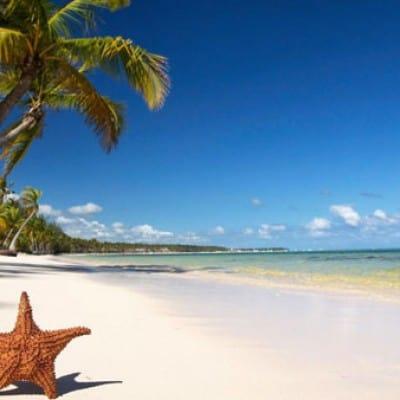 Tour thăm quan đông nam đảo Phú Quốc 1 ngày