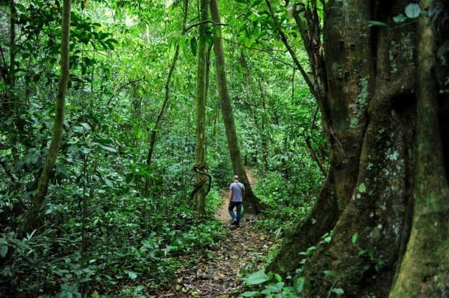 phu-quoc-national-park-du lich phu quoc xanh 2016