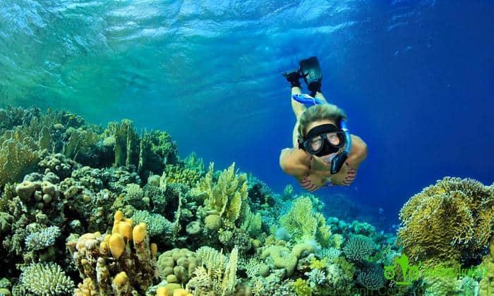 Lặn ngắm san hô với ông thở - snorkeling