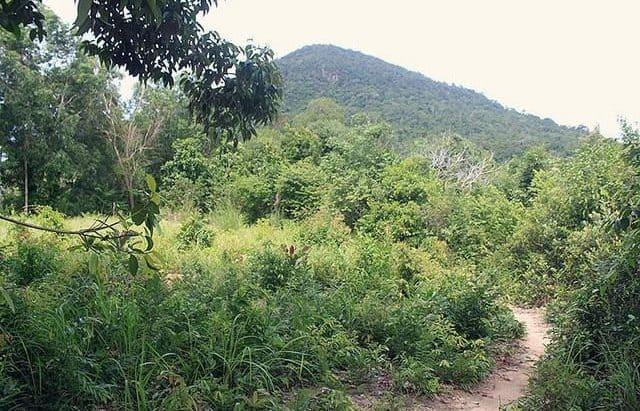 Đường lên núi Hàm Ninh