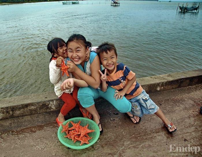 Sao biển được bán rất nhiều ở làng chài Hàm Ninh với giá bán chỉ từ 15.000 đến 20.000/con