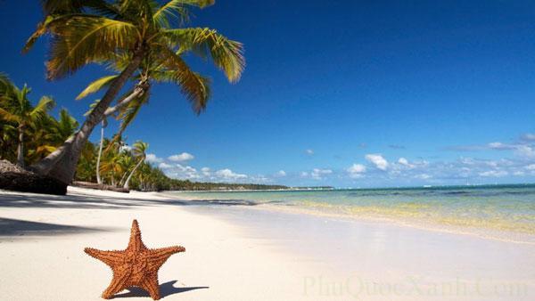 Gọi là Bãi Sao vì tương truyền rằng nơi đây ngày xưa là lãnh địa của loài sao biển