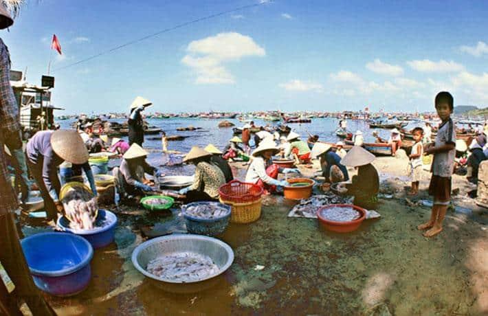 Ngư dân đánh bắt và buôn bán hải sản tại chổ