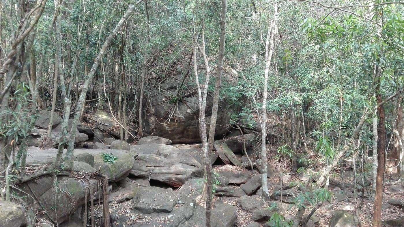 Đường đá gập ghềnh dẫn lên ngọn suối