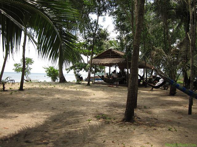 bai-thom-phu-quoc (1)
