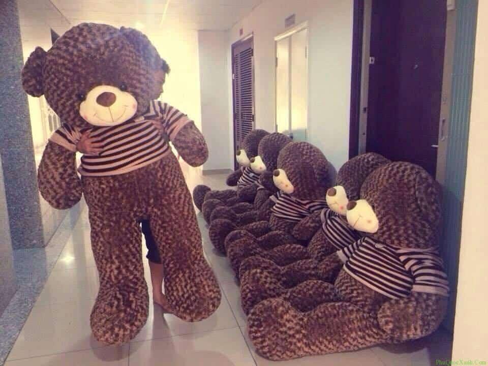 Những chú gấu bông là điều mà các cô nàng mong chờ nhiều nhất. Ảnh:phuquocxanh.com