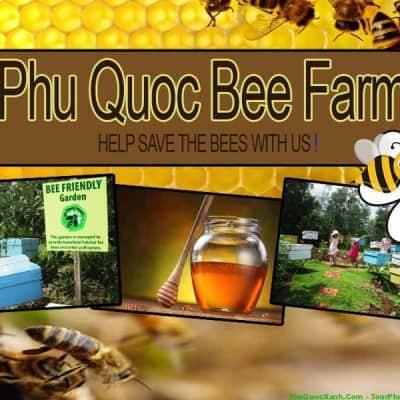 """Bạn có biết """"thiên đường mật ong"""" ở Phú Quốc không?"""