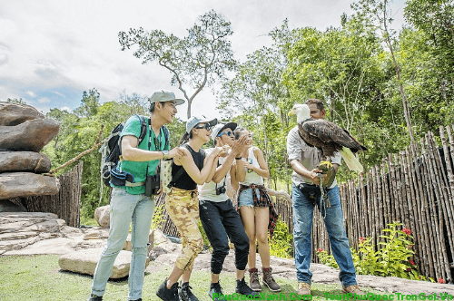 vuon-thu-safari-phu-quoc